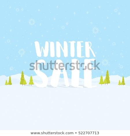 Winter Deals Blue Vector Icon Design Stock photo © rizwanali3d
