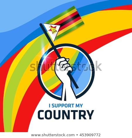 Brazilië Zimbabwe vlaggen puzzel geïsoleerd witte Stockfoto © Istanbul2009