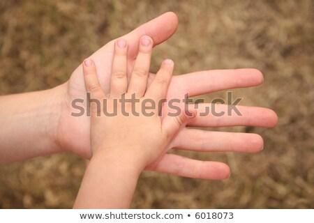 iki · eller · sarı · çim · toprak · anne - stok fotoğraf © Paha_L