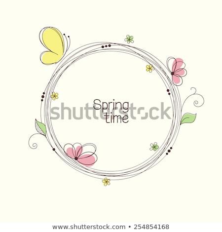 insecten · vlinders · geïsoleerd · witte · mooie · vlinder - stockfoto © bluering