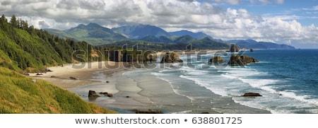seaside beach on the oregon coast stock photo © frankljr