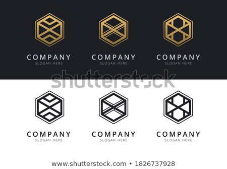letter x inside colorful hexagon shape stock photo © user_11138126