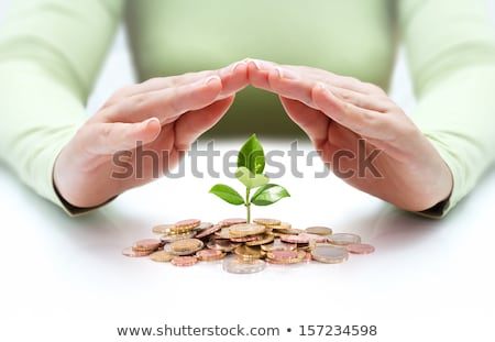 Protect business start-up concept - with hands and coin Stock photo © vlad_star