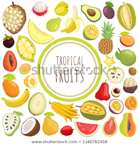 Citron and Chompoo Pineapple Fruit Posters Vector Stock photo © robuart