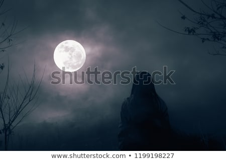 Silhouette of Little girl on a swing against the full moon. I love you to the moon and back, vector  Stock photo © ikopylov