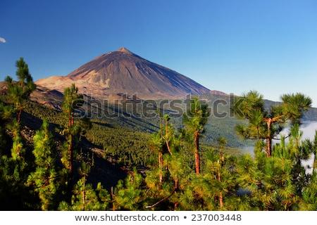 火山 · スペイン · 表示 · クレーター · 自然 - ストックフォト © carloscastilla