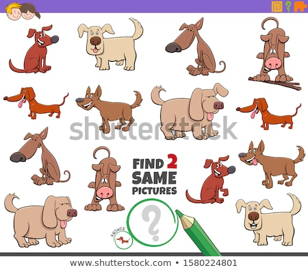 game of find two identical dogs characters Stockfoto © izakowski
