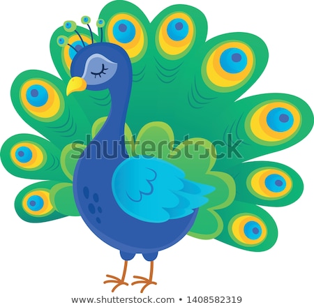 stylized peacock topic image 1 stock photo © clairev