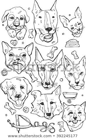 Fox Terrier Dog Breed Cartoon Retro Drawing Stock photo © patrimonio