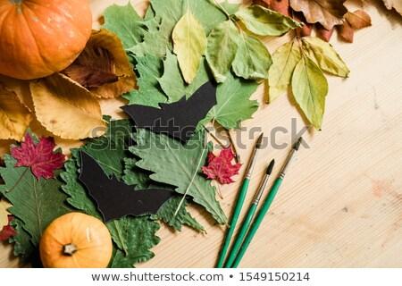 сквош · цветок · листьев · цветы · продовольствие · трава - Сток-фото © pressmaster