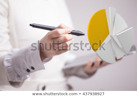Diagram with Segments, Statistic Graph, Report Stock photo © robuart