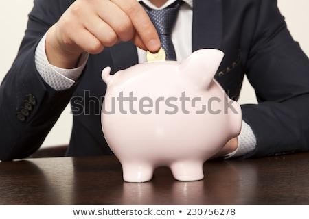Segura presupuesto guardar negocios dinero empleado Foto stock © AndreyPopov