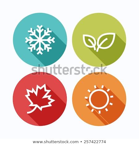 Négy évszak ikonok vektor színes izolált fehér Stock fotó © cidepix