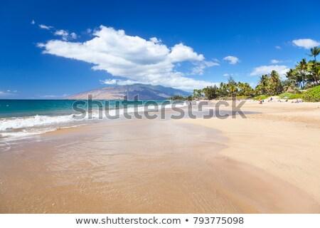 Havaí praia praia ondas natureza mar Foto stock © iofoto
