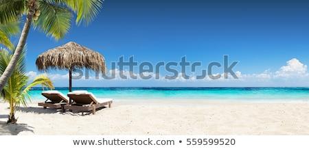 Tropikalnej plaży łodzi palma plaży niebo słońce Zdjęcia stock © ajlber