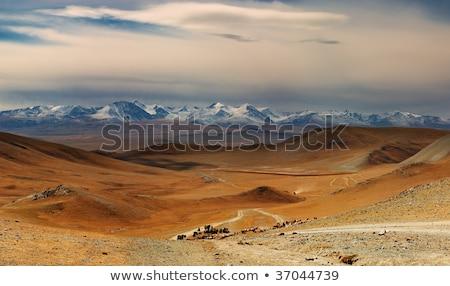 altai mountains beautiful highland landscape mongolia stock photo © iserg