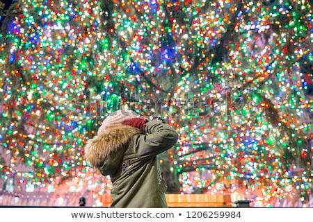 NYC Trees Stock photo © ArenaCreative