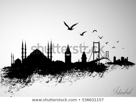 Isztambul sziluett épület sziluett építészet házak Stock fotó © compuinfoto