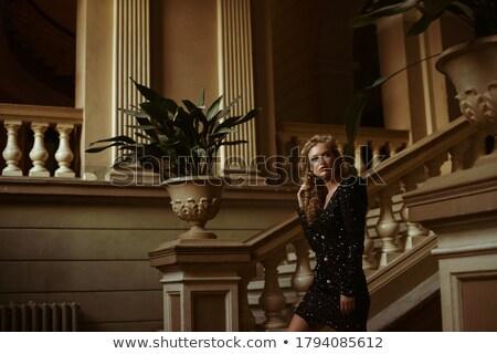 элегантный женщину черный вечернее платье красивая женщина долго Сток-фото © fantasticrabbit
