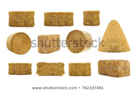 высушите · сено · тюк · трава · продовольствие · влажный - Сток-фото © wellphoto