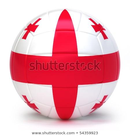 Voleybol takım yalıtılmış arka plan bayrak Stok fotoğraf © bosphorus
