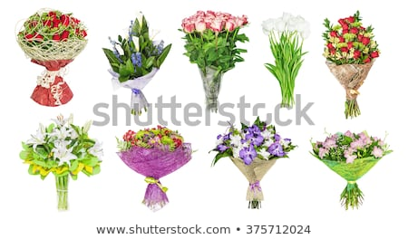 красивой белый тюльпаны цветы свадьба Сток-фото © tannjuska