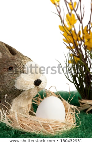 пасхальных · яиц · гнезда · три · белый · соломы · спрей - Сток-фото © juniart