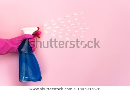 housewife cleaning her windows in rubber gloves Stock photo © Kzenon
