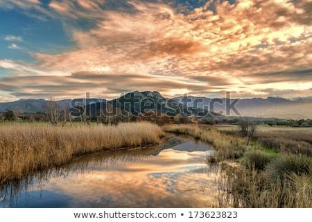 falu · part · folyó · természet · otthon · hó - stock fotó © joningall