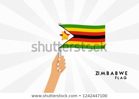 Zimbabwe kicsi zászló térkép köztársaság szelektív fókusz Stock fotó © tashatuvango