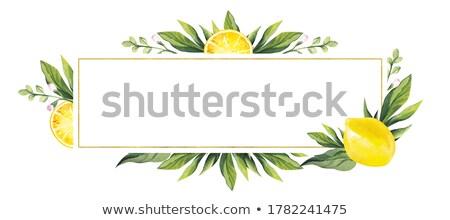 ストックフォト: 装飾的な · フルーツ · 場所 · 文字 · 自然 · 葉
