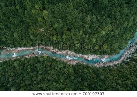 Ağaçlar nehir görmek gökyüzü ahşap orman Stok fotoğraf © art9858