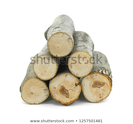 dry chopped firewood logs stacked up in a pile stock photo © tang90246