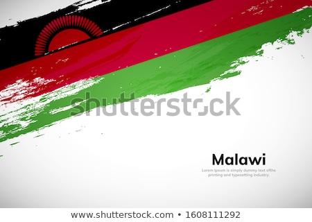 Малави стране флаг карта форма текста Сток-фото © tony4urban