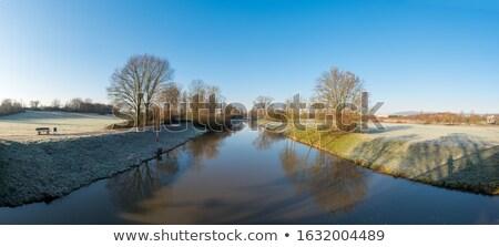 Panorama fiume Francoforte sul Meno acqua natura alberi Foto d'archivio © meinzahn