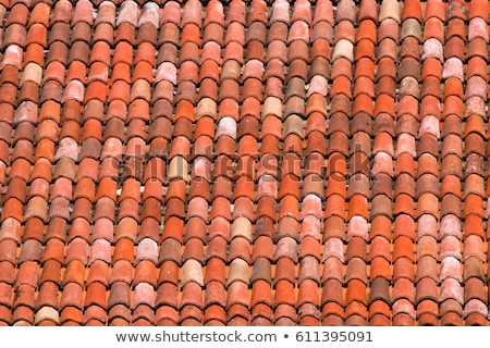 Clay tiles on an Italian roof Stock photo © julian_fletcher