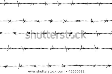 Barbed Wire elements 5 Stock photo © PokerMan