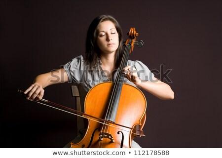 Káprázatos női játszik cselló fotó gyönyörű Stock fotó © sumners