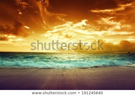 тропические · циклон · Карибы · морем · Элементы · изображение - Сток-фото © ixstudio
