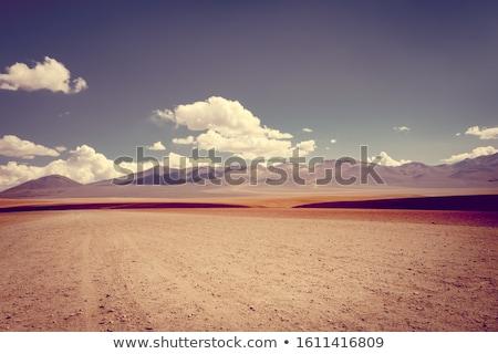 Siloli desert in sud Lipez reserva, Bolivia Stock photo © daboost