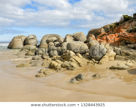 Five Mile Beach Wilsons Promontory Stock photo © THP