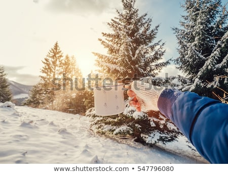 Stock photo: hands in mittens holding a mug of mulled wine