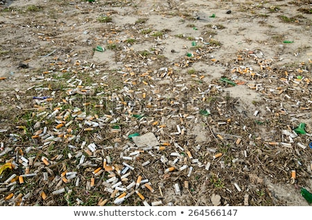 Cigarette butts in the snow Stock photo © IS2