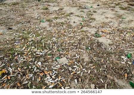 cigarro · papel · fumador · close-up · dois · hábito - foto stock © is2
