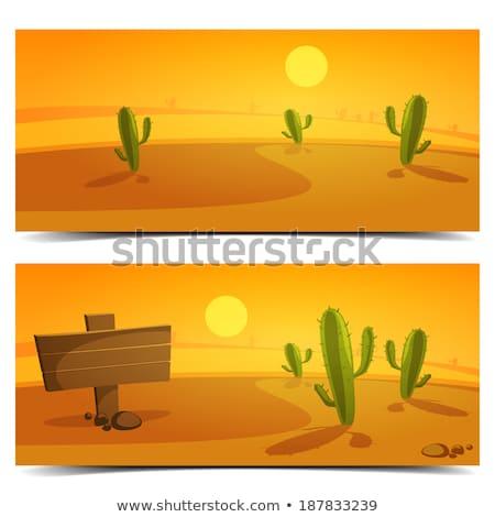 Desert scene with wood sign Stock photo © bluering