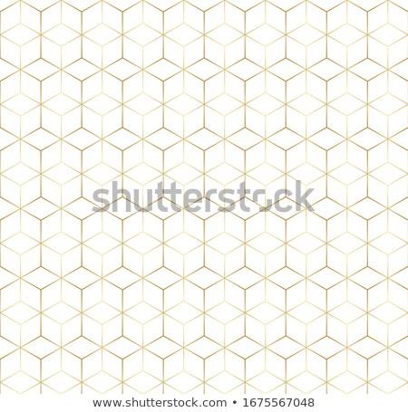Streszczenie plaster miodu wzór line sztuki tekstury Zdjęcia stock © SArts