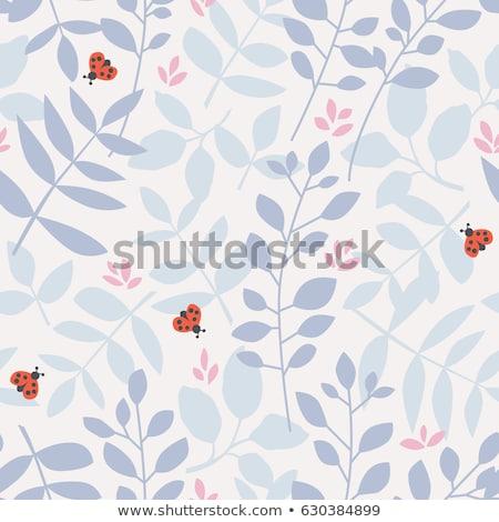 joaninhas · dois · abstrato · diversão · vermelho · cor - foto stock © colematt