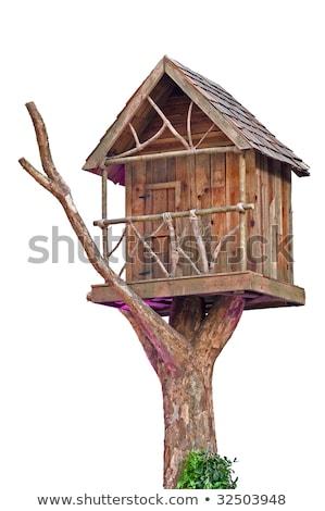 Isolated tree house on white background Stock photo © bluering