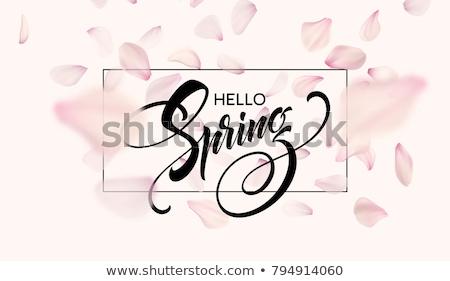 Voorjaar verkoop poster kers ontwerpsjabloon Stockfoto © ikopylov