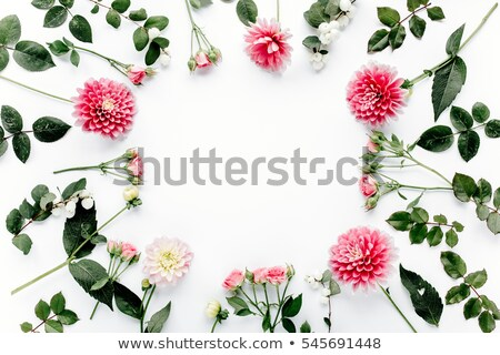 Wreath of bright summer flowers isolated on white background. Vector cartoon close-up illustration. stock photo © Lady-Luck